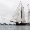 L'Iris, sailing lugger hollandais